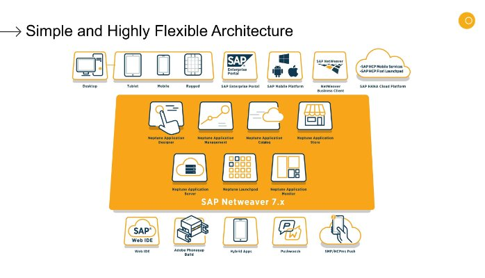 neptune architecture over sap.jpg