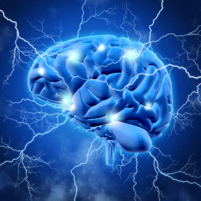 ¿Qué son las redes neuronales y cómo se aplican?